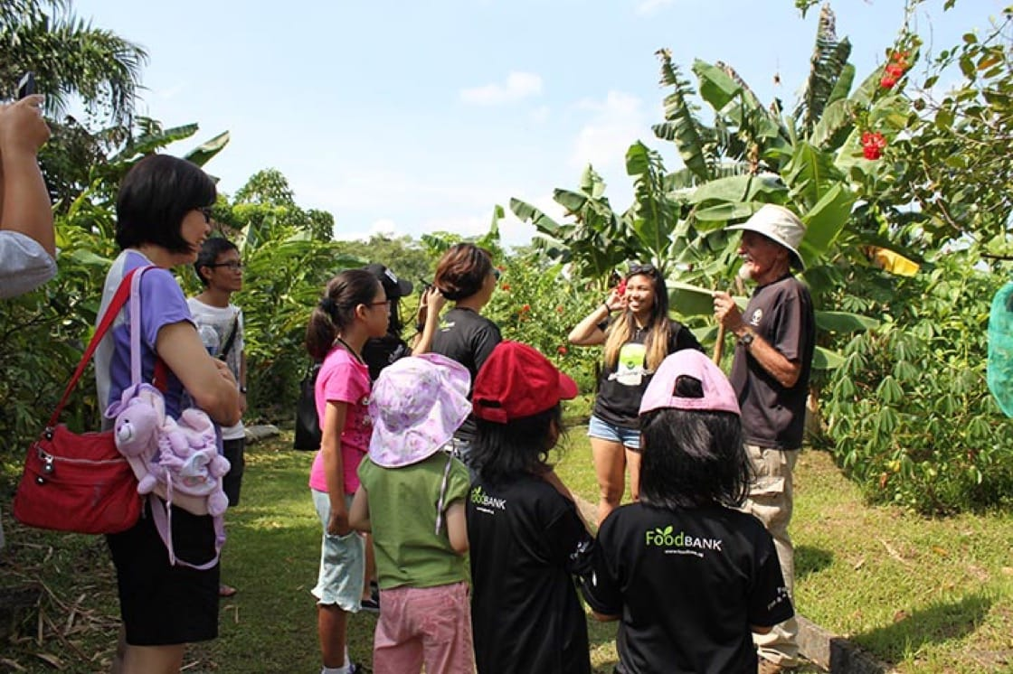 Do a farm tour at Bollywood Veggies