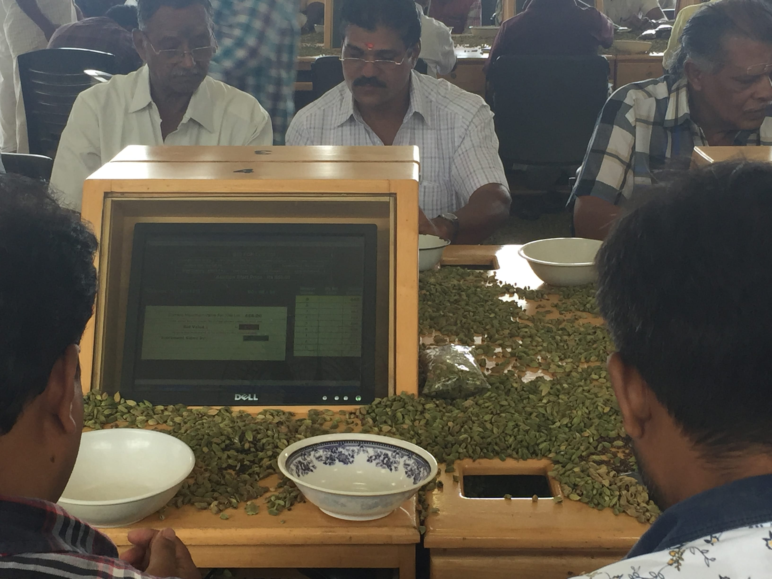 cardamom dealers bidding at the auction