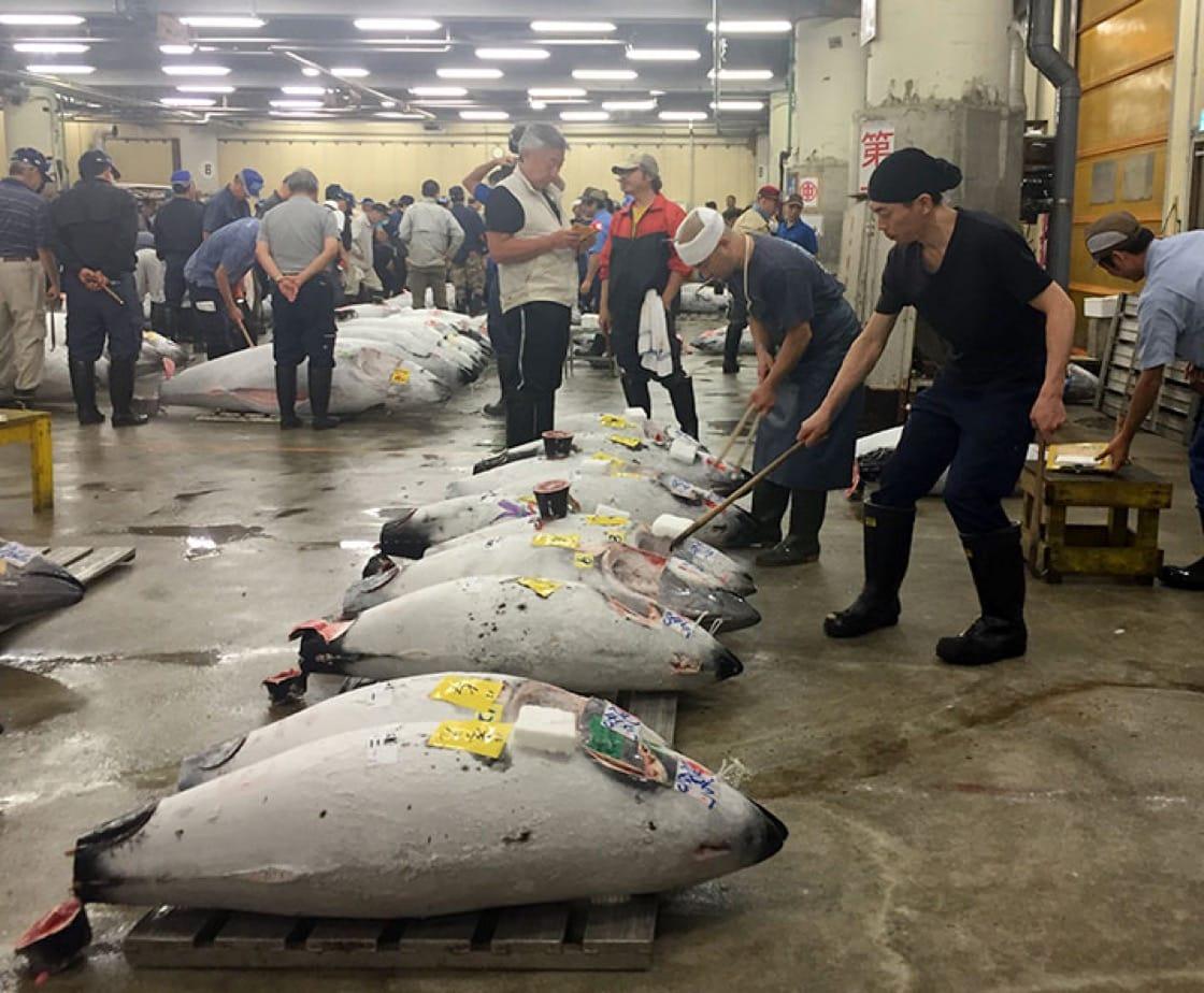 在场的工作人员,正在清理已卖出的冷藏鲔鱼。