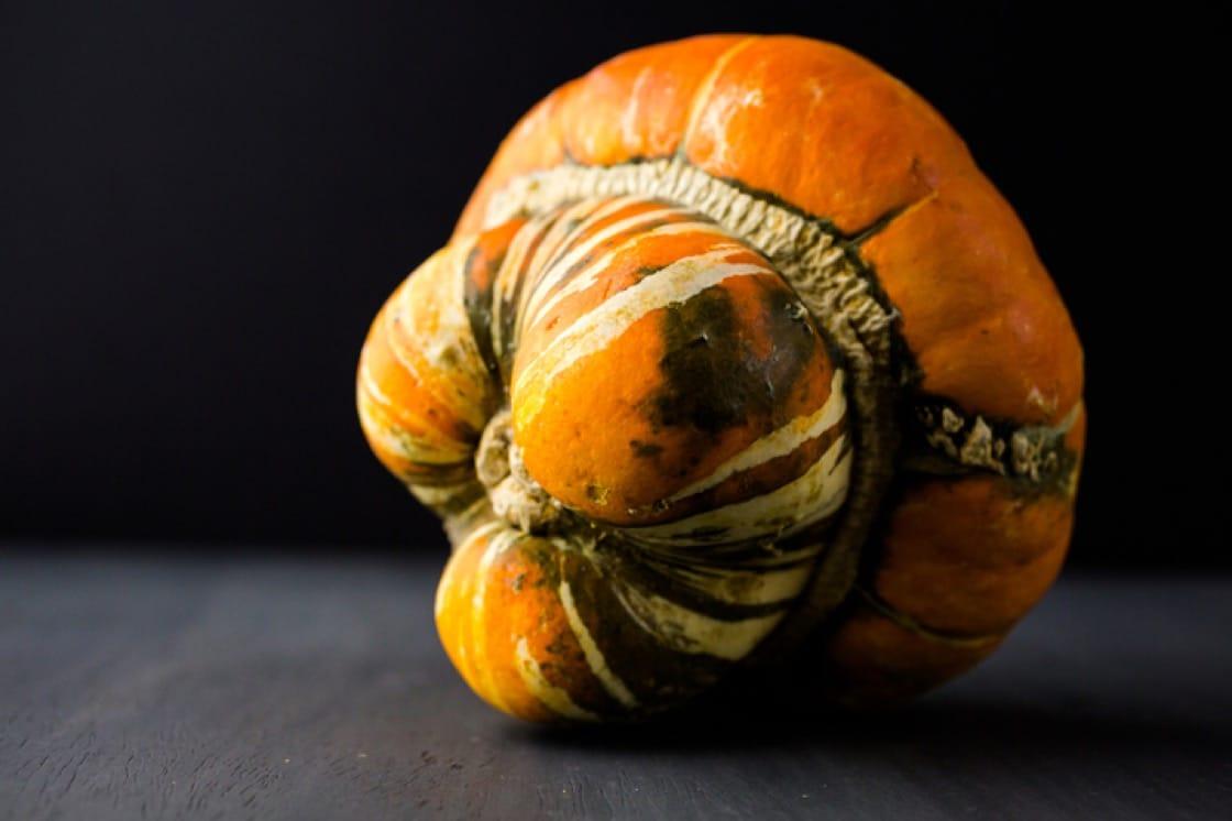 "Turban squash, also known as ""Turk's turban"" or ""French turban"", is delicious winter squash."