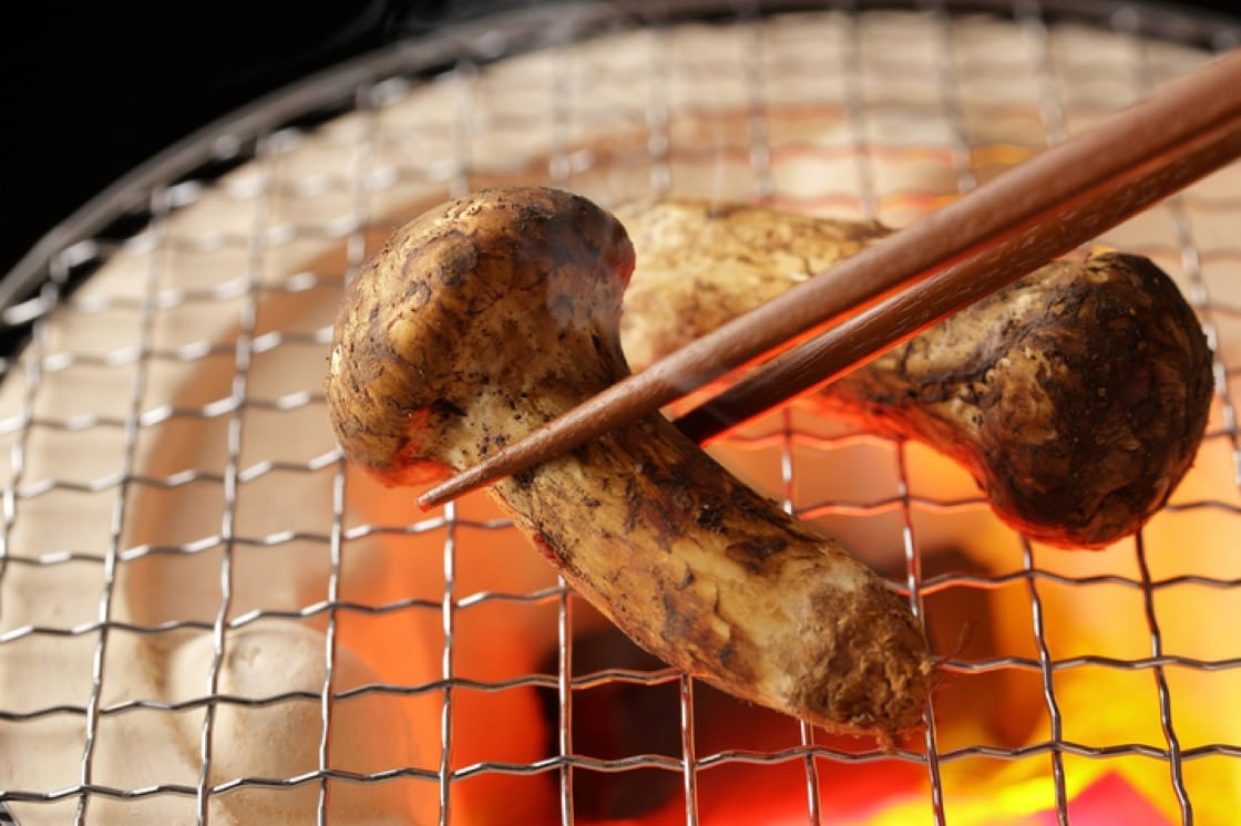 The Japanese are said to have enjoyed eating matsutake mushrooms since ancient times. Clay statues depicting them were found in ruins from the Jomon Period from 13,500 years ago to about 3,000 years ago.
