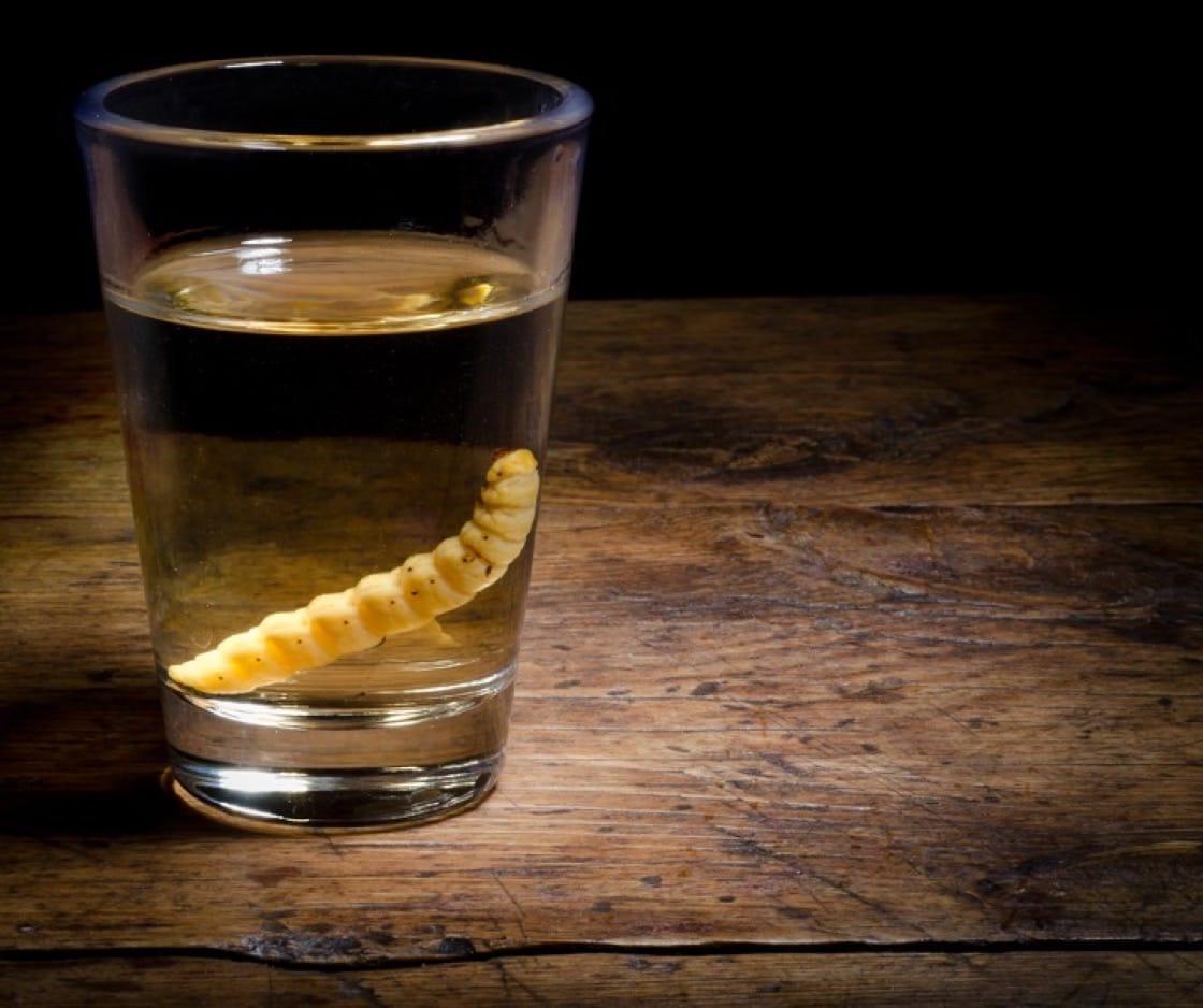 梅茲卡爾酒釀酒廠有時會在酒中加入蠕蟲(這是在龍舌蘭草收成期間找到的寄生蟲),作為酒的標記。(資料圖片)