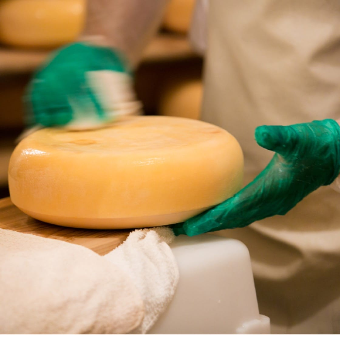 Each wheel of Pleasant Ridge Reserve is washed with a brine solution. Photo courtesy of Uplands Cheese.