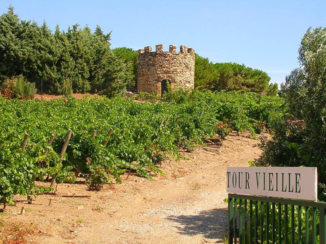 The grounds of Domaine La Tour Vieille. (Photo courtesy of Domaine La Tour Vieille.)