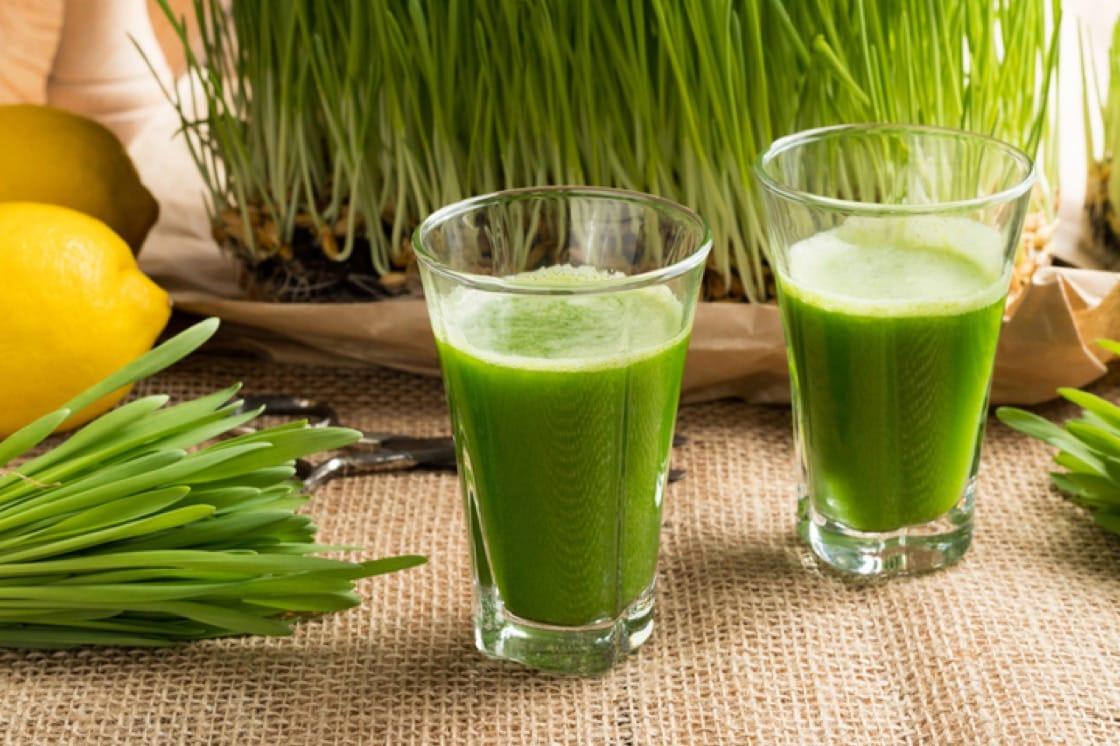 小麦草富含叶绿素,具有排毒特性。