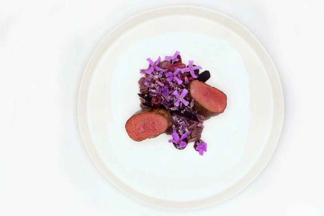 Deer ginger quinoa, red cabbage, blackberry pickles.