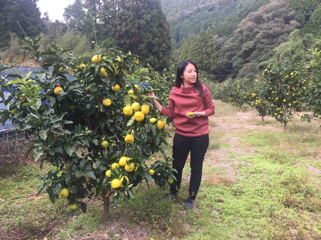 Chef Janice Wong checks out a fruit orchard in Kochi, Japan.