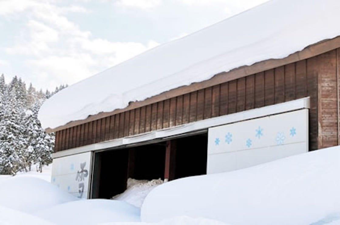 覆蓋白雪的雪室(圖片來源:Echigo Yukimuro-ya 網站)