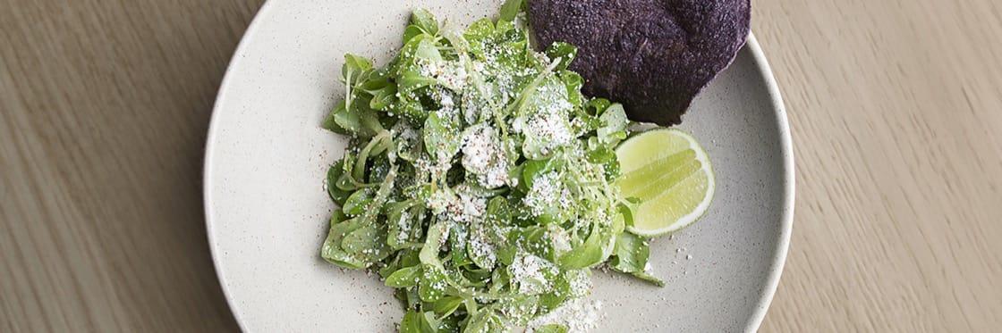 The Best Mexican Restaurants In Manhattan