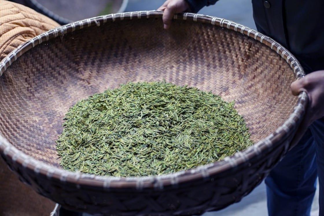 人手炒茶還是比機炒的好。(圖片來源:福茗堂)