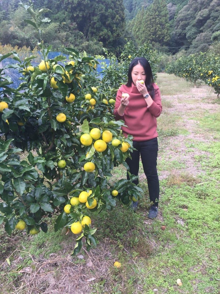 Janice in Naoshichi farm 10.jpg
