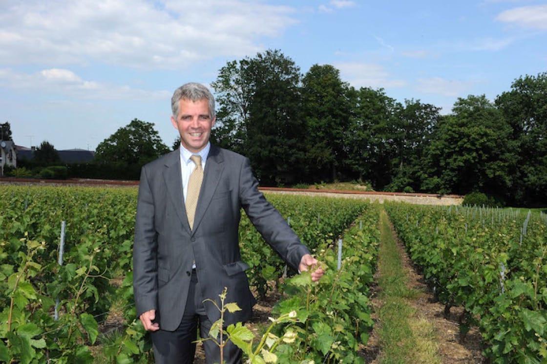 Olivier Krug in a vineyard