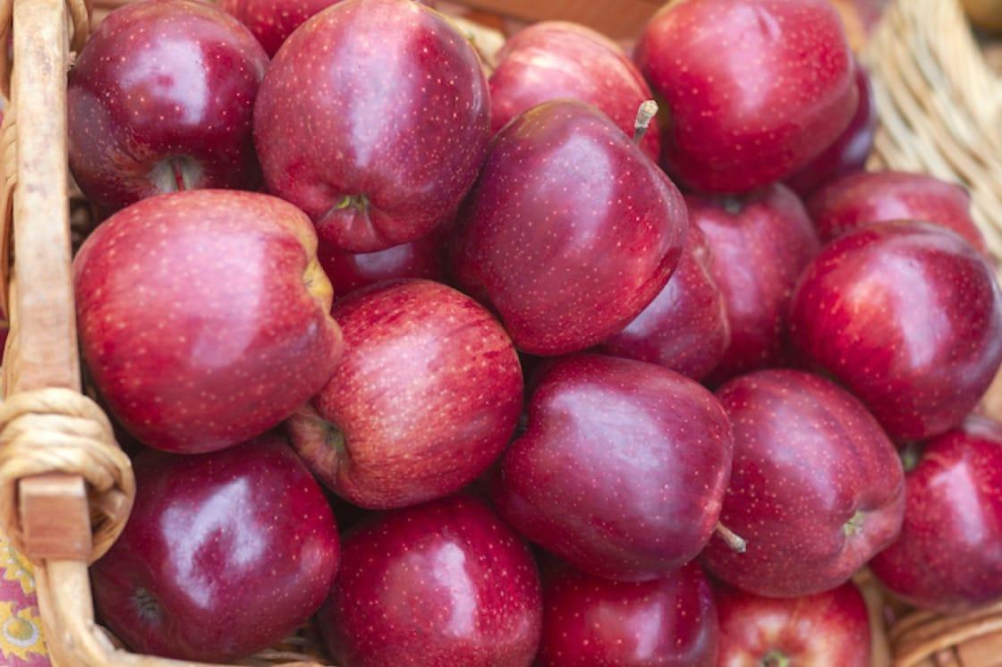 五爪蘋果(Red Delicious)