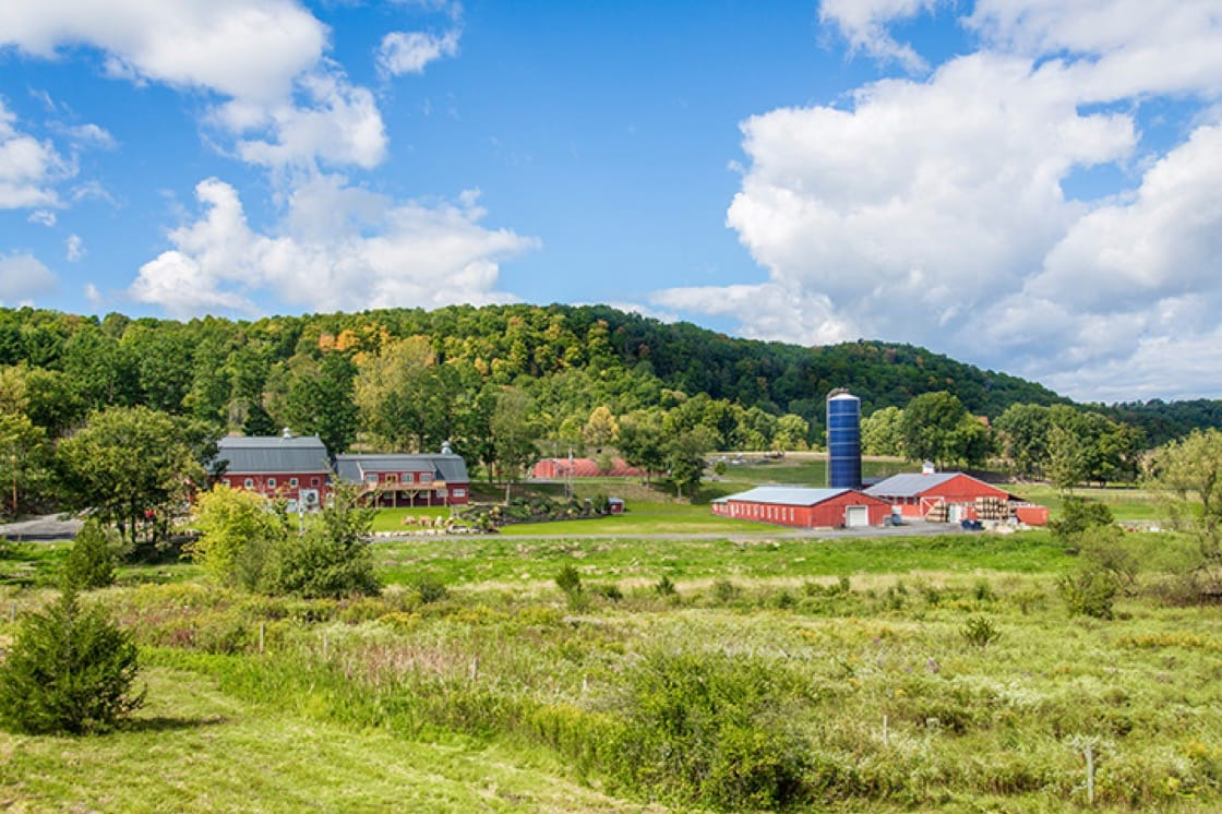WhistlePig farm occupies 500 acres in Shoreham, Vermont.