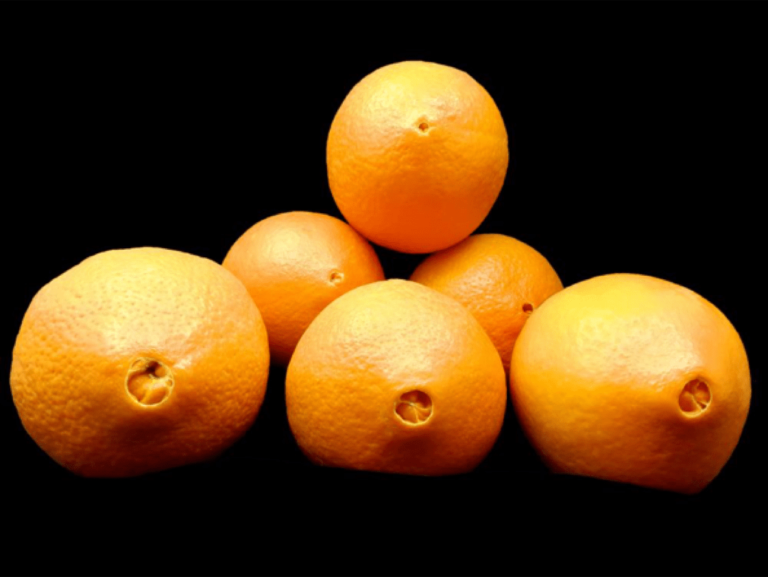 5 Types of Oranges to Know