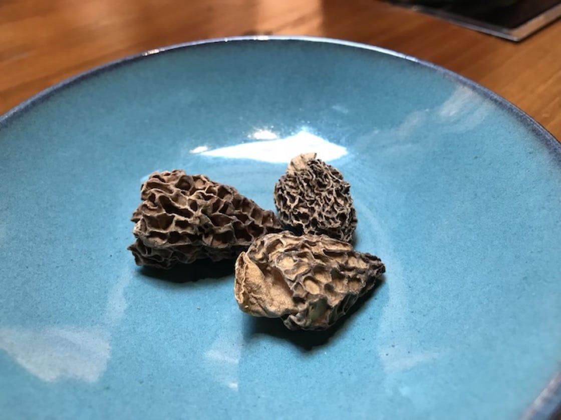 Morel mushrooms require a labour-intensive harvest process. (Credit: Kenneth Goh)