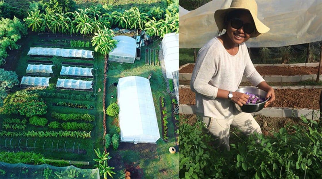 (ซ้าย) ภาพมุมสูงของฟาร์มมองเห็นเรือนเพาะปลูกที่ลูกค้าสามารถเช่าเพื่อปลูกพืชตามสั่งได้ (ขวา) เมย์  โนเบิลทำงานในฟาร์มเคียงข้างสามี