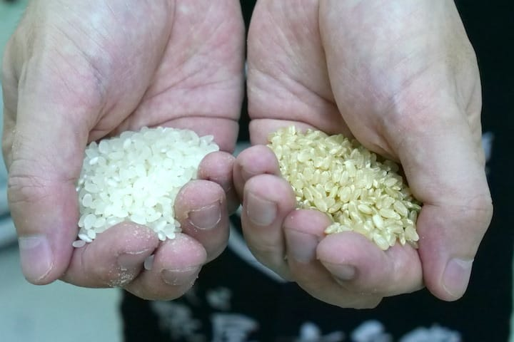 Freshly polished and unpolished Japanese short grain rice (Pic: MICHELIN Guide Digital)