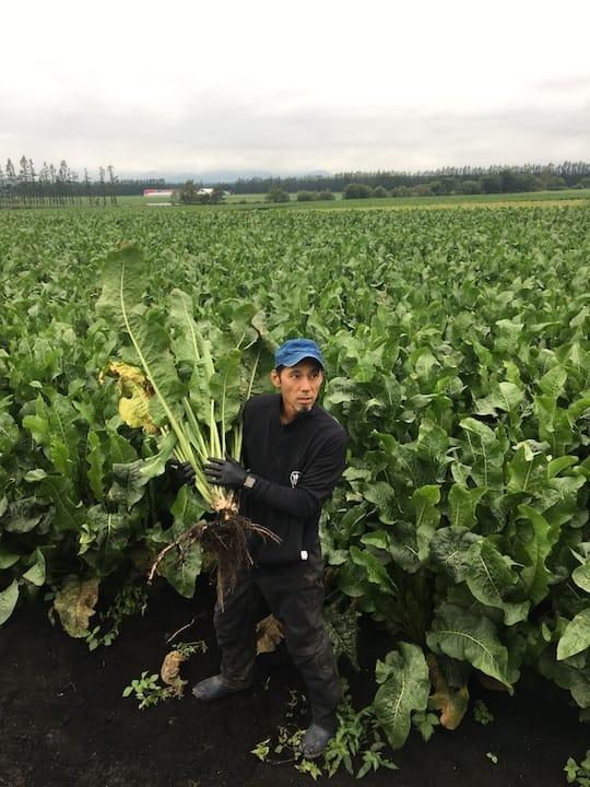 https://d3h1lg3ksw6i6b.cloudfront.net/media/image/2018/10/05/8d2f77384dab4ca4980807df5c520710_1_Yamakawa+Farm_Yama+Wasabi_3.JPG