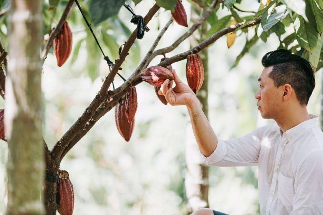 福灣巧克力主廚許華仁,這幾年頻頻把台灣滋味帶上國際舞台。(圖片:福灣巧克力提供)