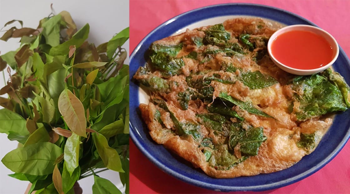 Raw miang leaves and miang leaves omelette. Photo credit: Mimi Grachangnetara.