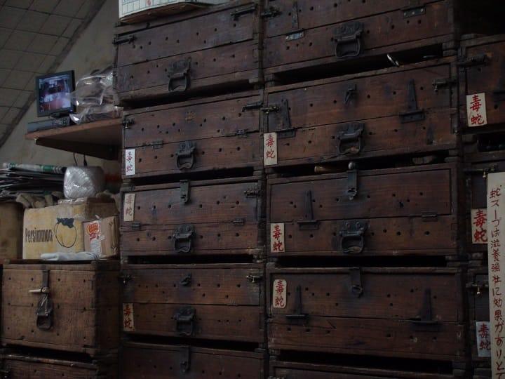老蛇店都會把蛇養在木櫃內,需用時才取出宰殺。(圖片:孟惠良)