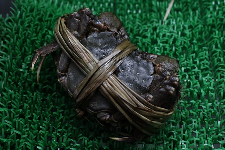 不少食客認為,日本北海道大閘蟹,口感和味道不及中國的。(圖片:陳佳男)