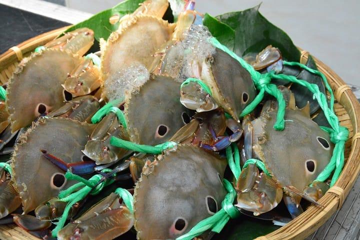 萬里蟹中的三點蟹,肉質細緻多汁。(新北市政府漁業及漁港事業管理處提供)