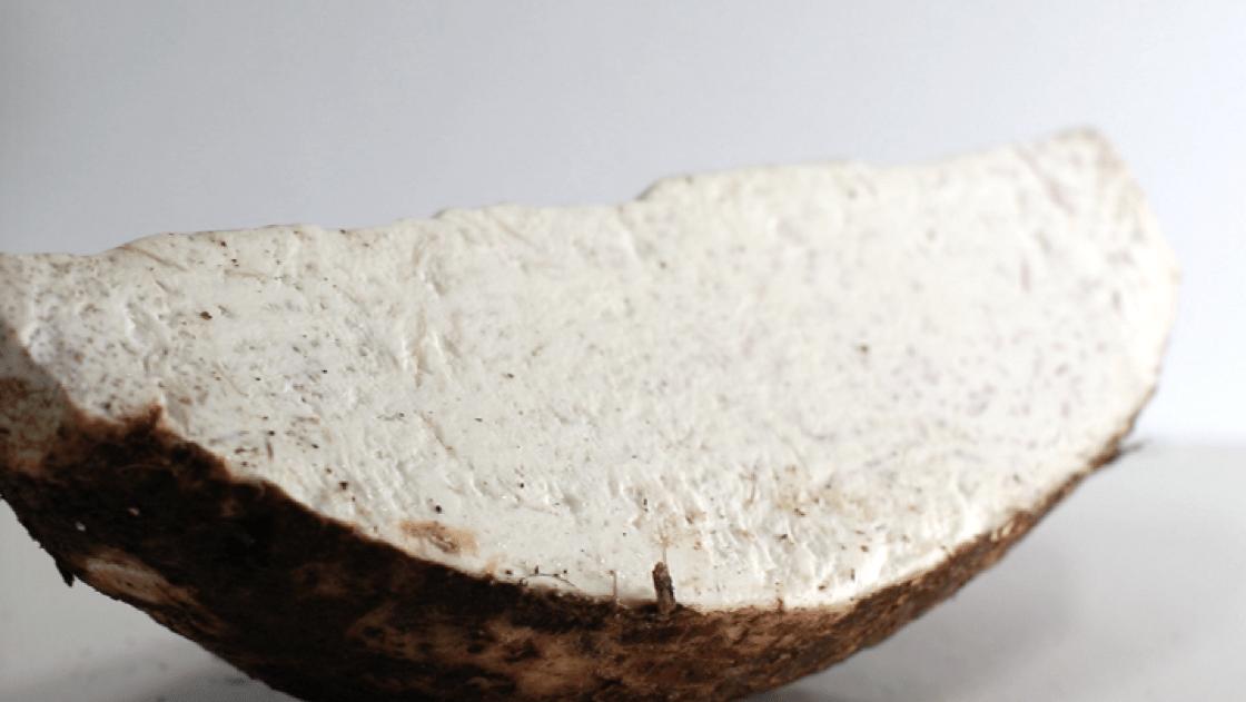 荔芋產於廣西荔浦,古時曾是皇室貢品。(圖片:陳佳男)
