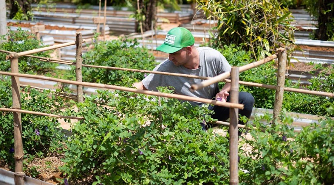 Chef Jim Ophorst at Pru Jampa Farm.