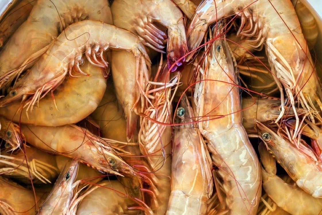 現在包雲吞主要取海蝦,味更鮮濃。(資料圖片)