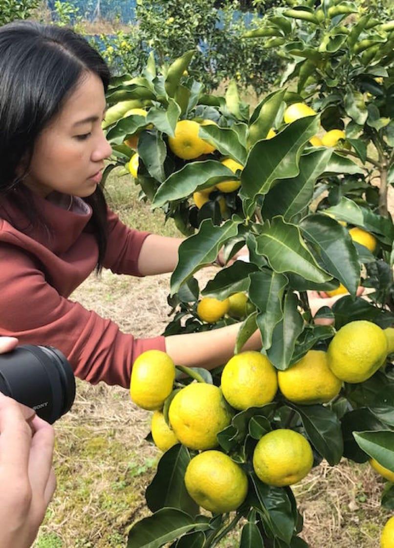 Janice in Naoshichi farm 2.jpg