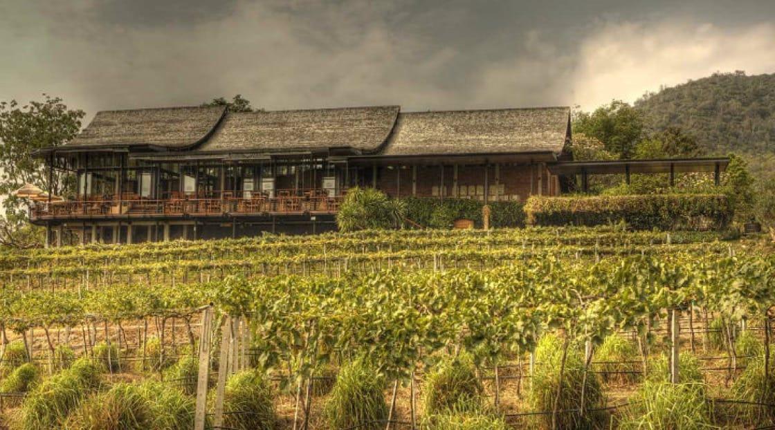เดอะศาลา ไวน์บาร์ แอนด์ บิสโทร ที่มอนซูน แวลลีย์