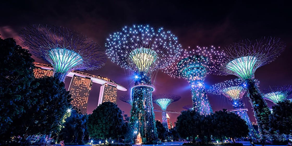 "For city highlights, Ng recommends heading over to the famed Gardens by the Bay to visit the ""supertrees."""