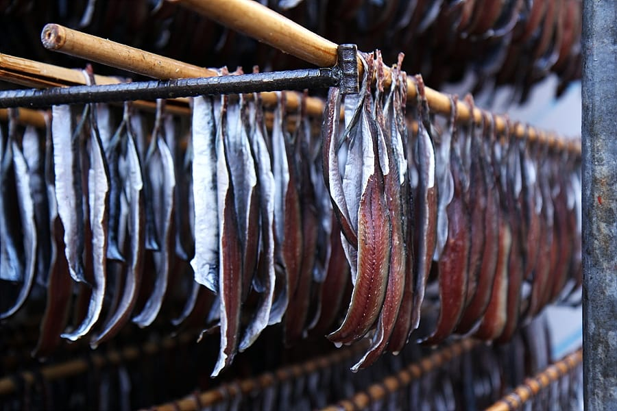 Gutted and filleted Pacific saury hanging on racks