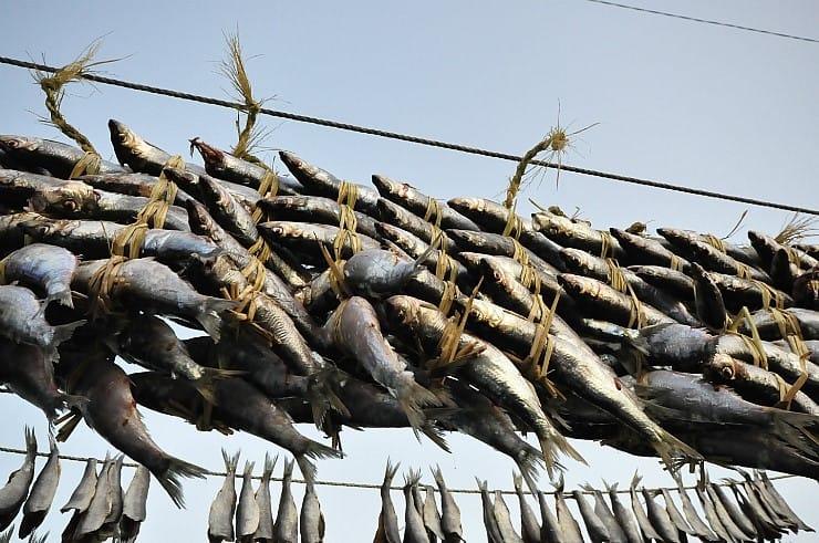 'Tongmari' are whole ungutted herring gwamegi, enjoyed mostly by the locals in Guryongpo.