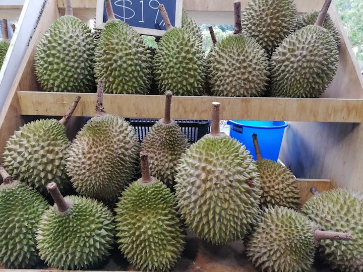 Ask The Expert: How To Pick And Choose Durians