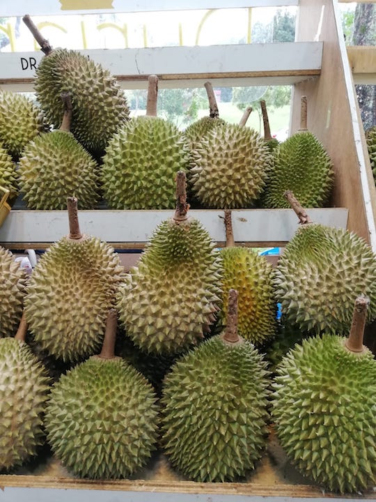 How to choose durians_1.jpeg
