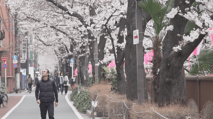 Myers looks at the arrival of spring time, which is marked by the blooming of sakura flowers, as a whole new clean slate to begin creating dishes again.