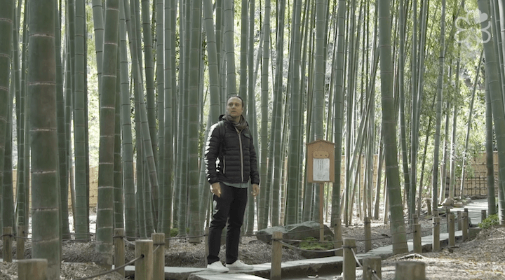 Myers travels to the bamboo forest in Kamakura, which is south of Tokyo, to unwind and connect with nature.