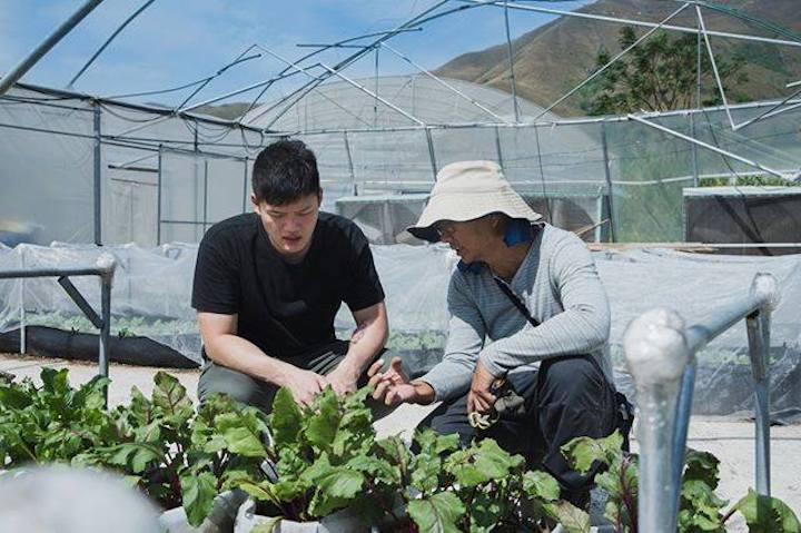 Chef Barry Quek was intrigued by the quantity of organic vegetable farms in Hong Kong. (Photo: Beet)