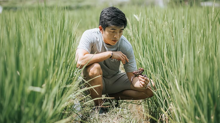 Chef Ton admires a field crab he caught in a rice paddy.