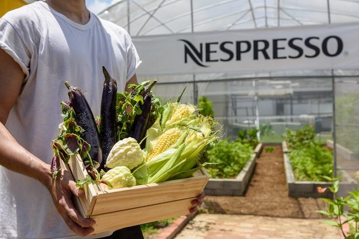 All vegetables grown at the Hong Kong Organic Waste Recycling Centre use coffee grounds-based compost. (Pic: Nespresso)