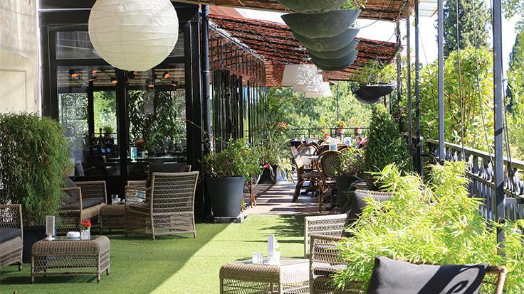 Terrasse salon vert du Bistrot des Anges Bruno Oger