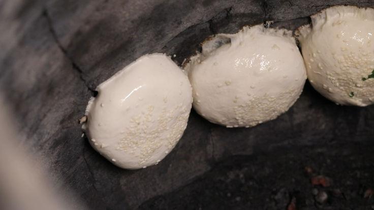 """""""福州世祖胡椒饼""""坚持做好的胡椒饼必须一颗颗手工黏在两到三百度的窑壁上,烤出来的饼皮才带有炭的焦香。"""