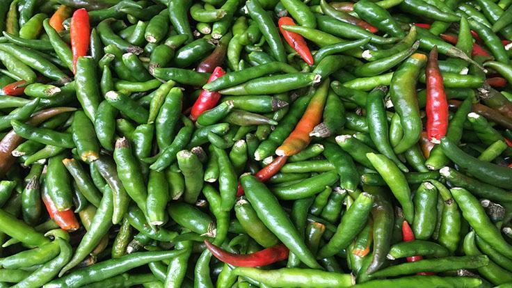 若要找一種能夠以最多方式提升多道泰式佳餚的食材,必定是這種鳥眼辣椒。