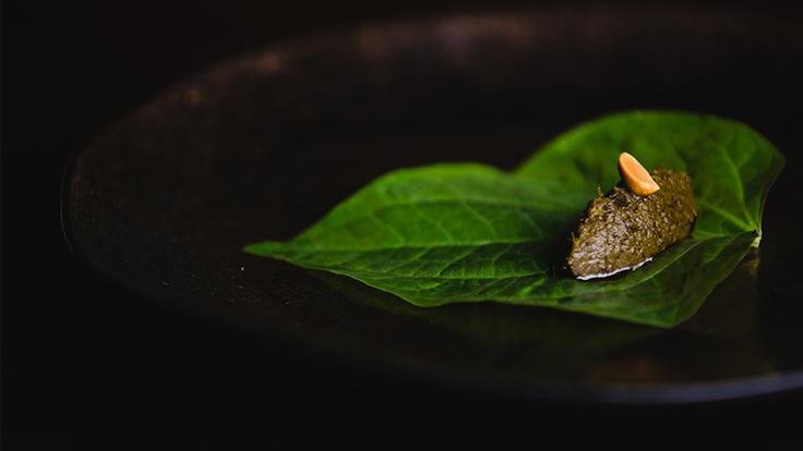 เมี่ยงใบชา (เครดิตภาพ: สวรรค์)