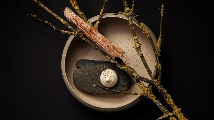 Bois de panais, salsifis, chocolat blanc ©Thaï Toutain