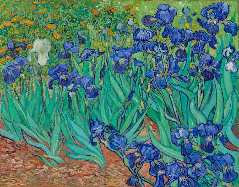 Irises (1889) by Vincent van Gogh, The J. Paul Getty Museum, courtesy of the Getty's Open Content Program
