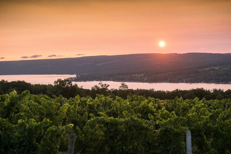 Dr. Frank Wines vineyards and Keuka Lake, Finger Lakes, New York State. Photo courtesy of Dr. Frank Wines